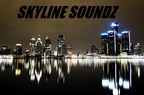 Skyline Soundz-Pleasant Ridge DJs