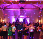 DJ Indiana (FREE Online Wedding Planner) -Ridge Farm DJs